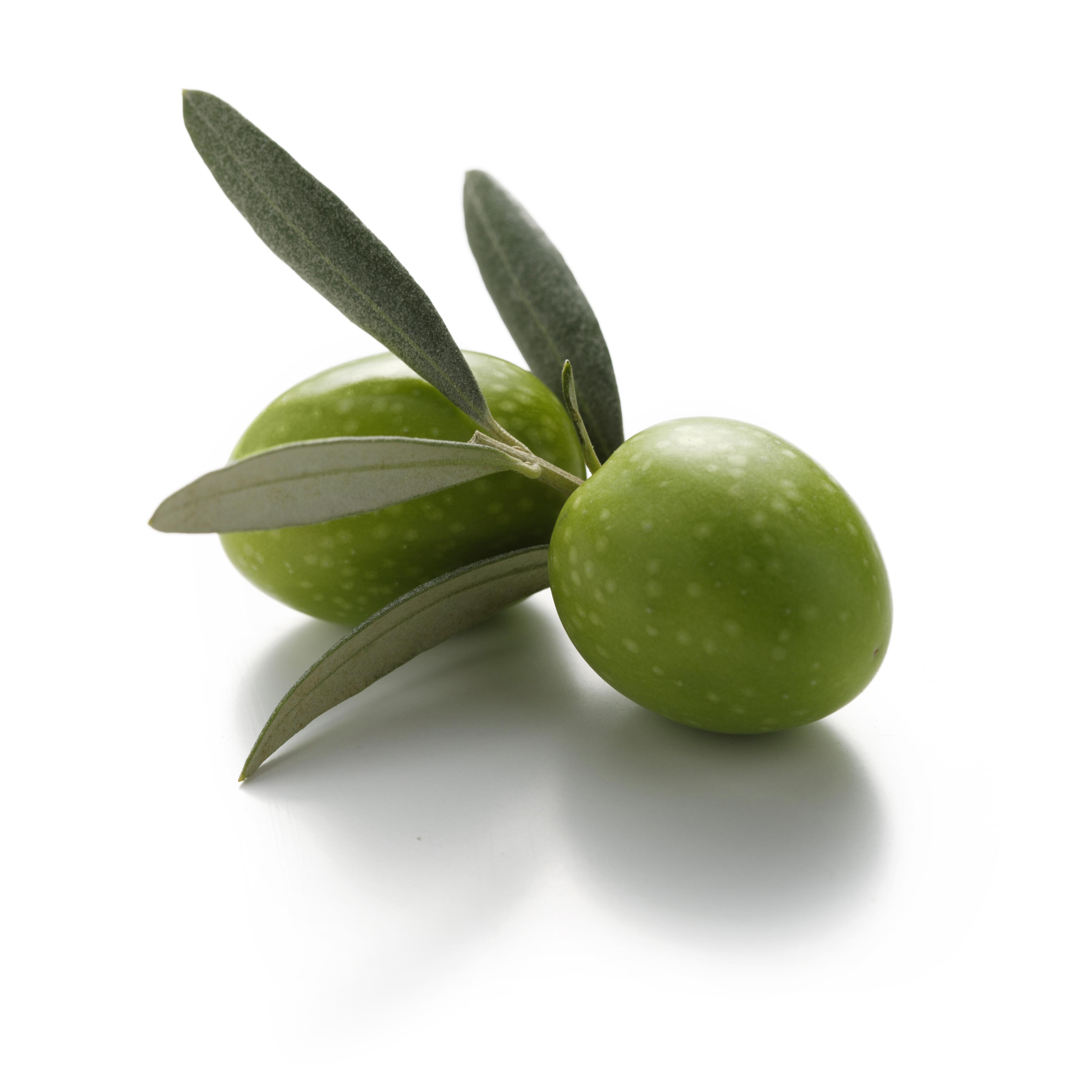Olive da tavola per l 39 industria alimentare oltre cinquanta anni di esperienza maturati nel - Tipi di olive da tavola ...